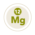 Source of Magnesium