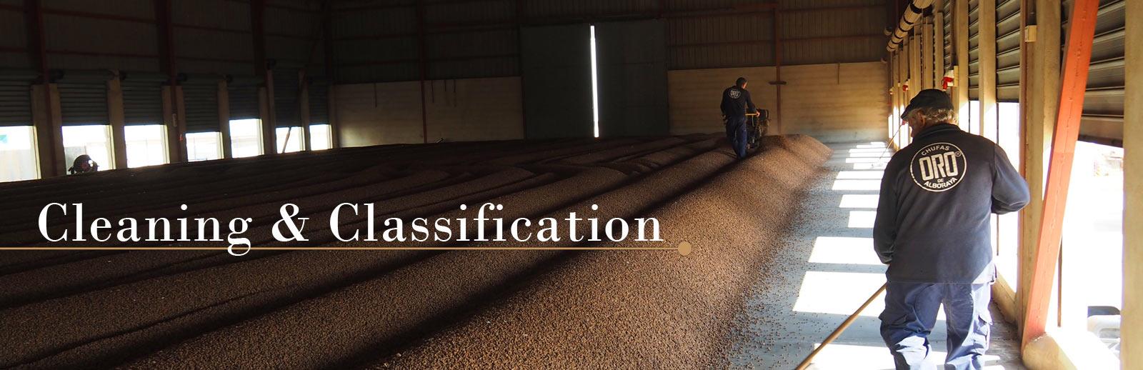 Limpieza y Clasificación